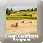 Green Certificate Button